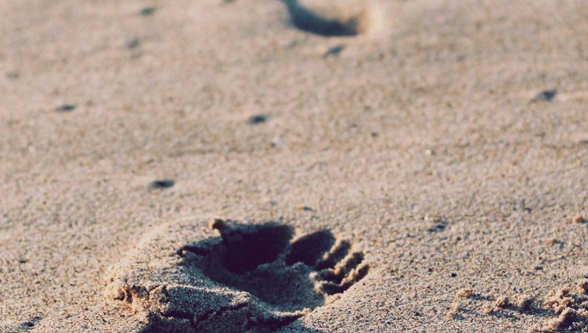 Unterstützung für Hinterbliebene nach Suizid-Fällen